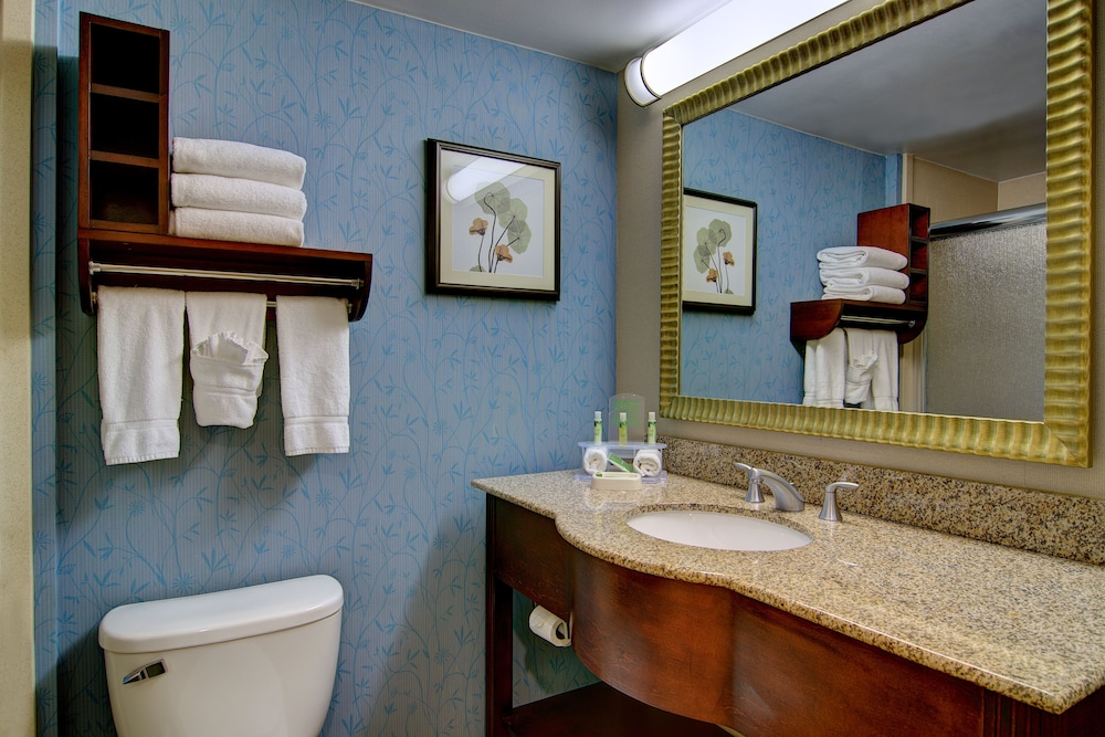 Bathroom, Holiday Inn Express Hotel & Suites Germantown-Gaithersburg