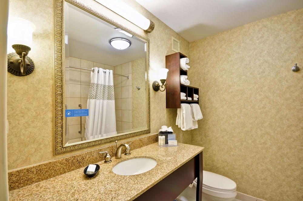 Bathroom, Hampton Inn Charleston - Historic District