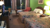 Econo Lodge - Osceola Hotels