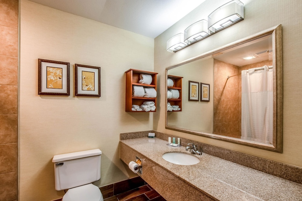 Bathroom, Quality Inn & Suites