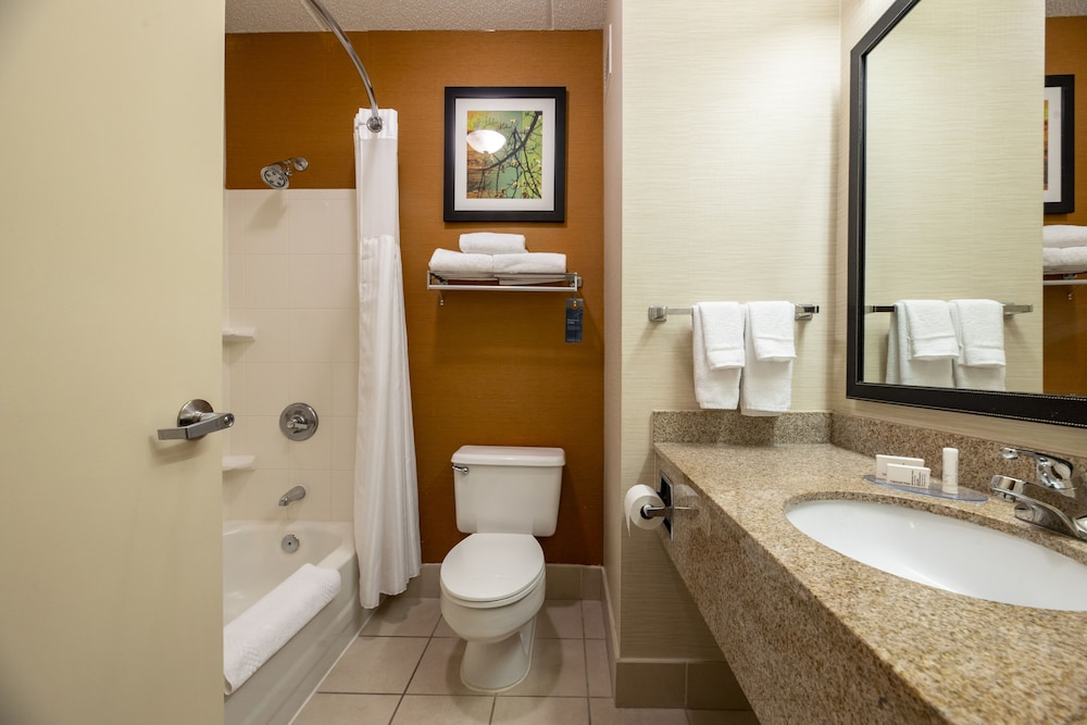 Bathroom, Fairfield Inn & Suites by Marriott Lumberton