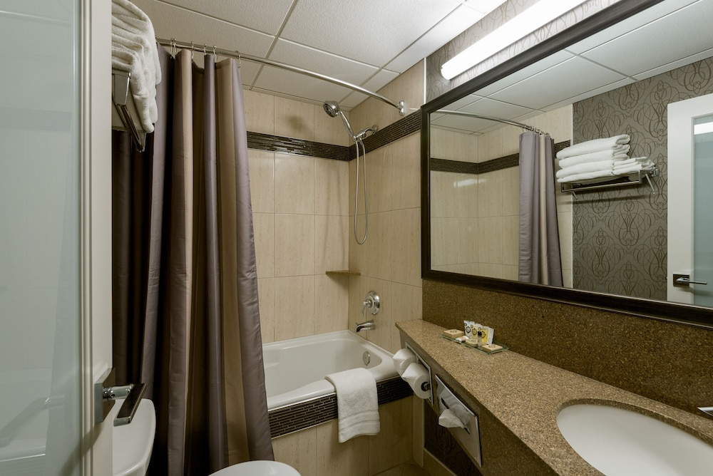 Bathroom, Carriage House Hotel & Conference Centre