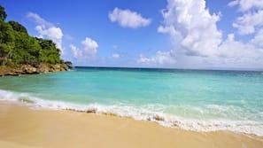Private beach, snorkelling, windsurfing, beach bar