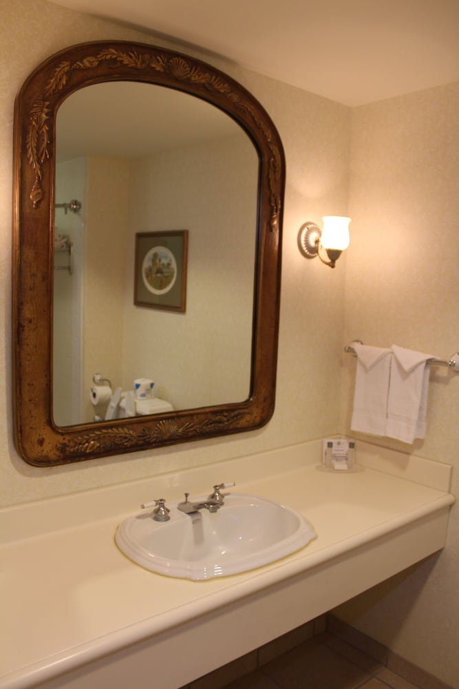 Bathroom Sink, Monumental Hotel Orlando