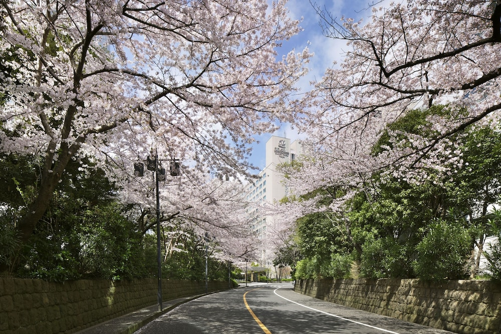 Street View, The Prince Sakura Tower Tokyo, Autograph Collection