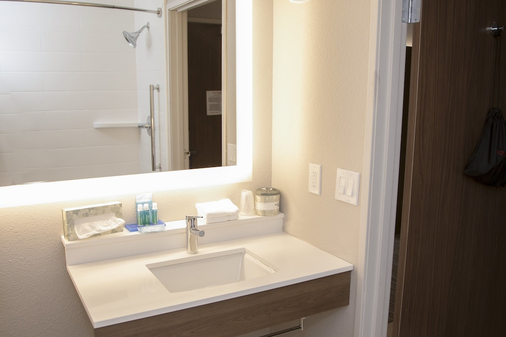 Bathroom, Holiday Inn Express & Suites Colorado Springs North, an IHG Hotel