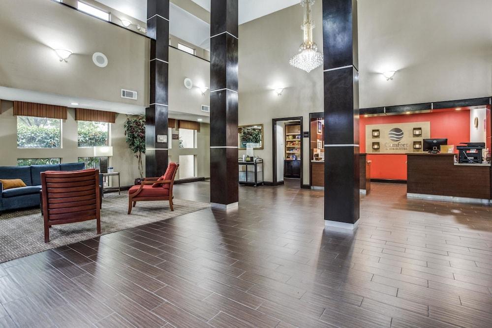 Comfort Inn Suites Love Field Dallas Market Center 2019 Room