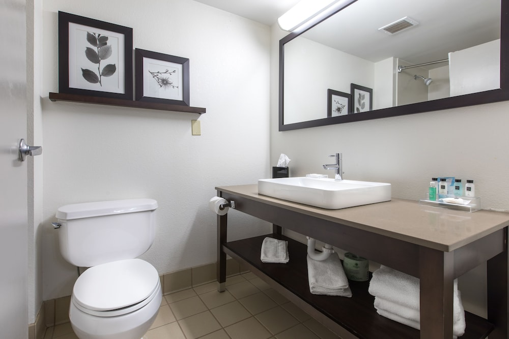 Bathroom, Country Inn & Suites by Radisson, Lake Norman Huntersville, NC