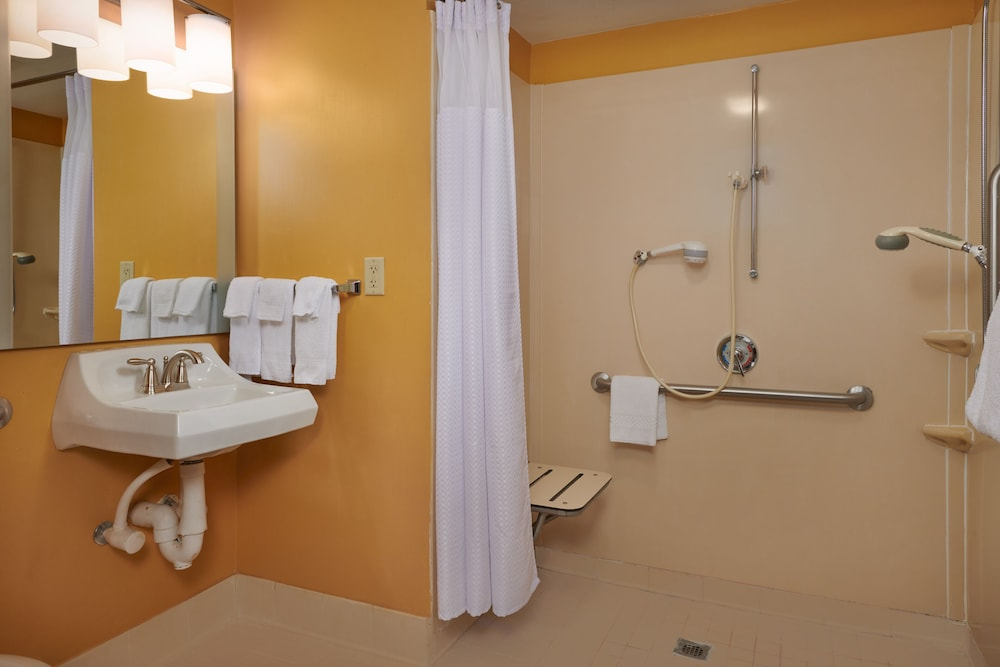 Accessible bathroom, TownePlace Suites by Marriott Tampa North/I-75 Fletcher