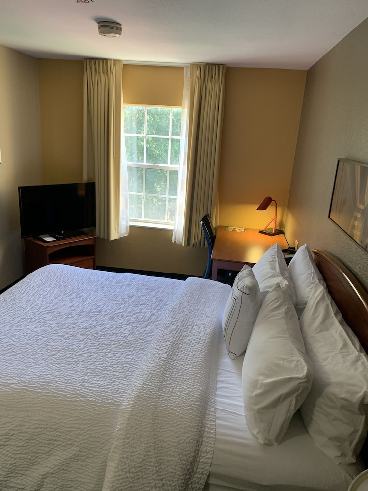 Room, TownePlace Suites by Marriott Tampa North/I-75 Fletcher