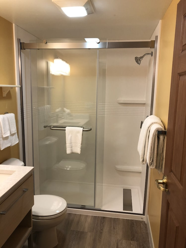 Bathroom Shower, TownePlace Suites by Marriott Tampa North/I-75 Fletcher