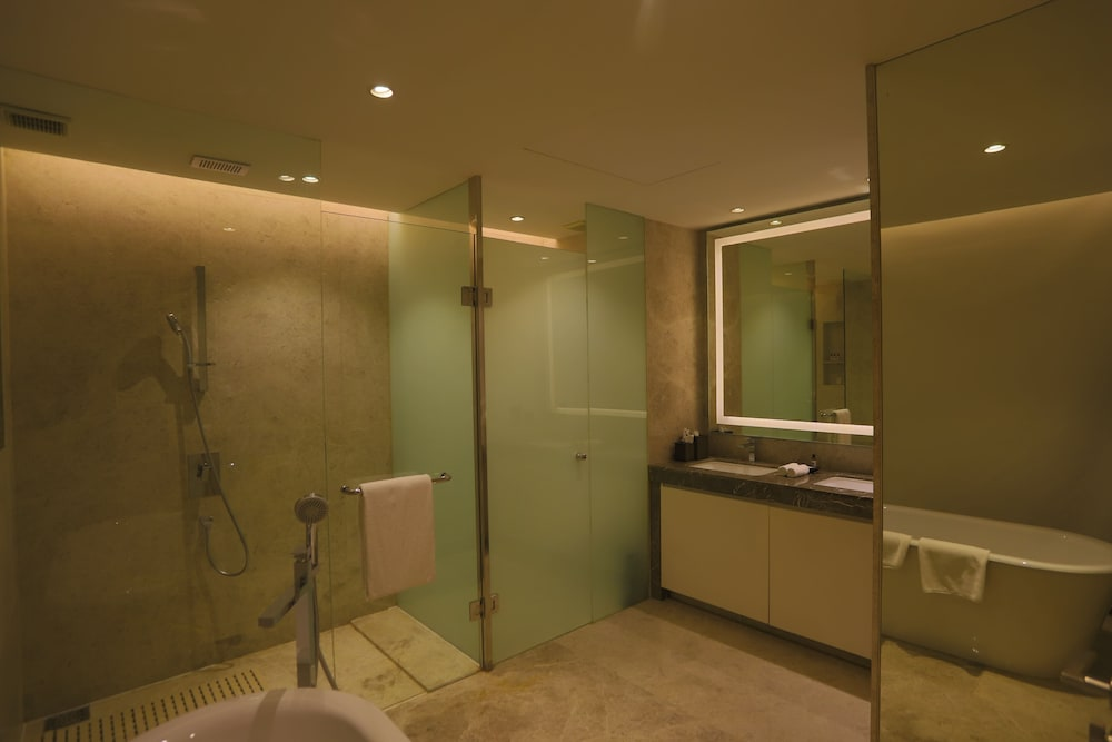 Bathroom, Hyatt Regency Delhi