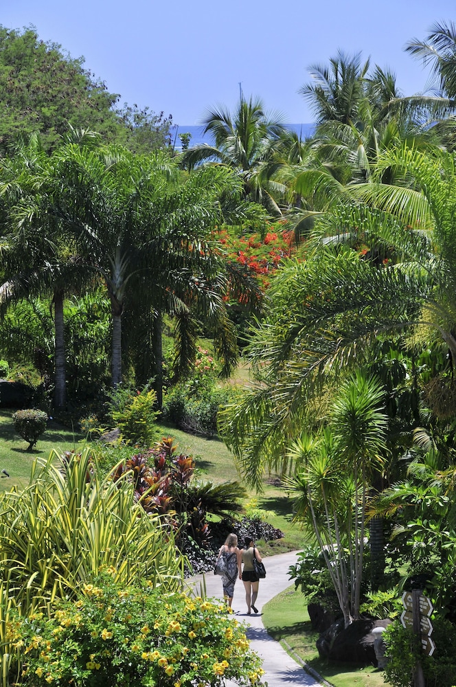 Garden, InterContinental Resort Tahiti