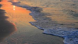 Plage privée, sable blanc, beach-volley, bar de plage
