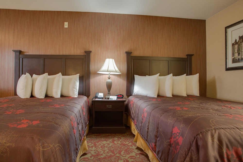 Room, Castle Inn and Suites