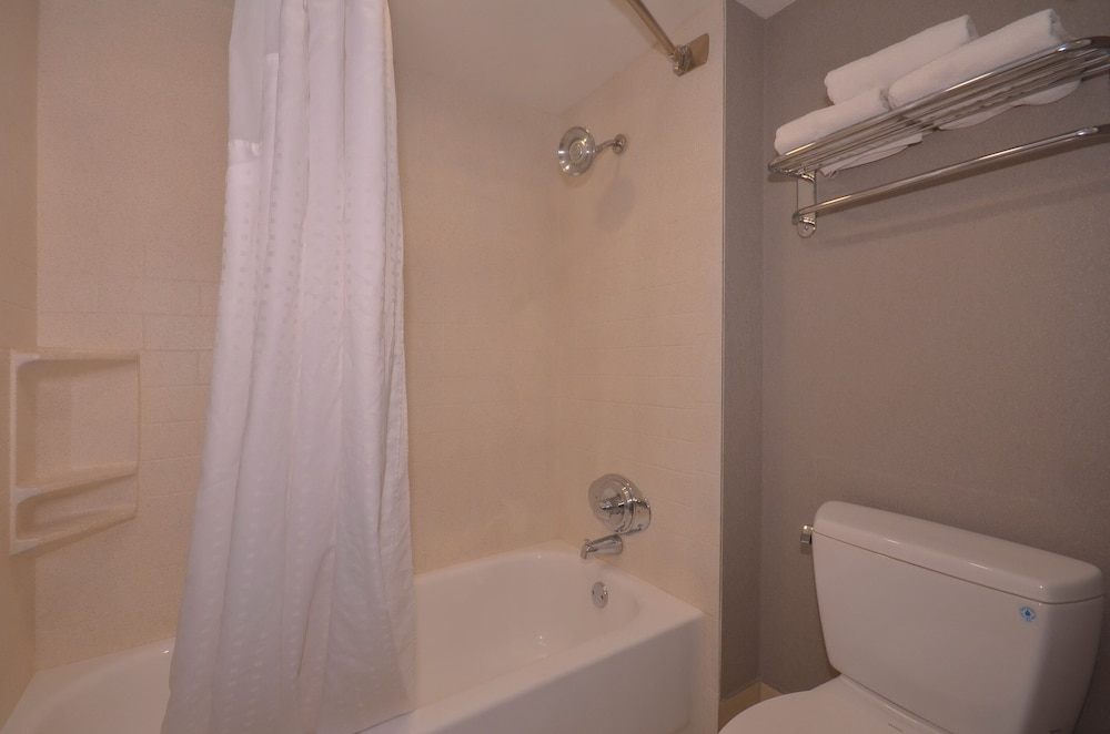 Bathroom, Holiday Inn Express Fayetteville- Univ of AR Area