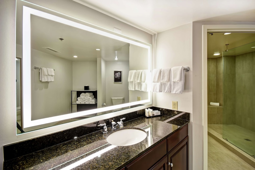 Bathroom, Embassy Suites by Hilton Montgomery Hotel & Conference Ctr