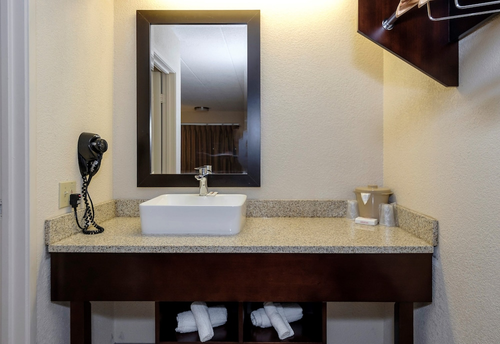 Bathroom, Red Roof Inn Lansing East – MSU