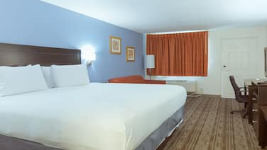 Hotel South Tampa & Suites