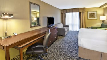 Holiday Inn National Airport/Crystal City, an IHG Hotel