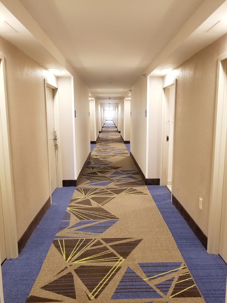 Hallway, Holiday Inn Express & Suites Miami - Hialeah