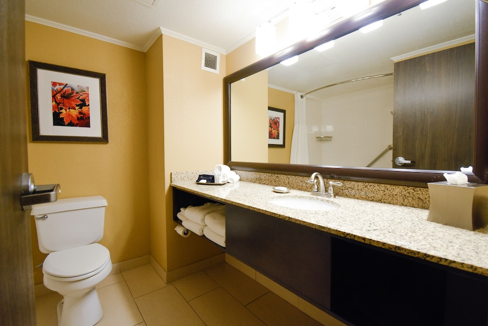 Bathroom, Welk Resorts Branson Hotel