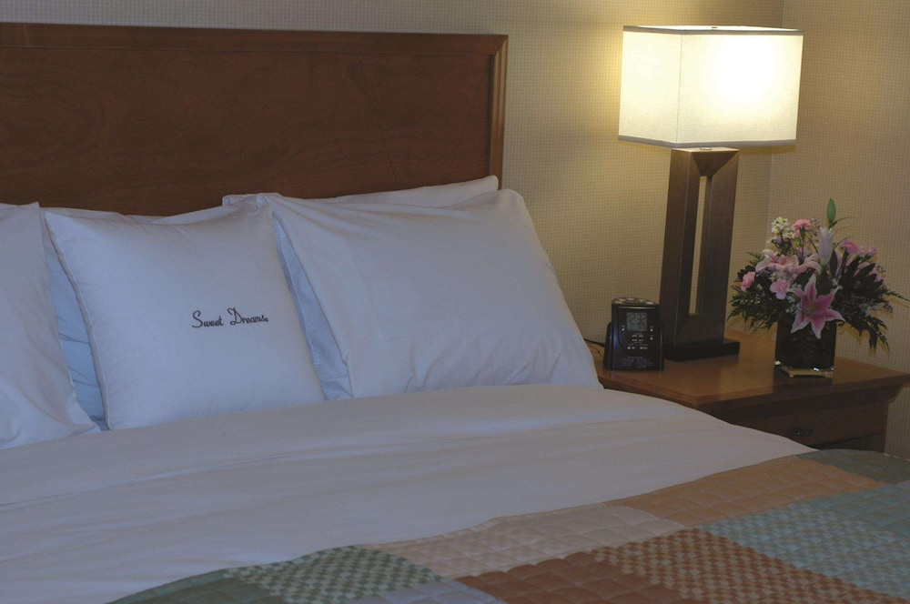 Room, DoubleTree by Hilton Columbus - Worthington