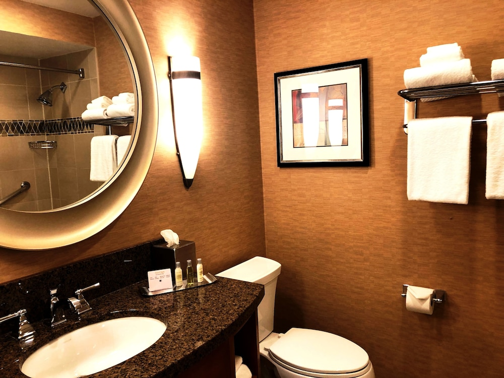 Bathroom, DoubleTree by Hilton Durango