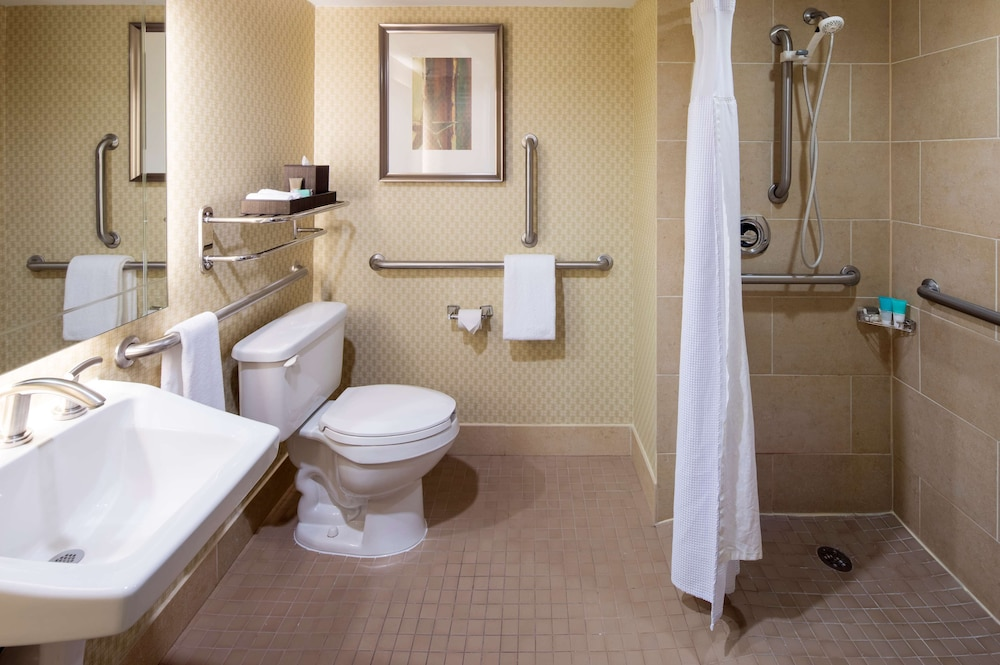 Bathroom, Hyatt Regency Houston Intercontinental Airport