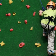 Rock Climbing Wall - Indoor