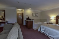 Standard Suite, 1 King Bed, Non Smoking, Fireplace