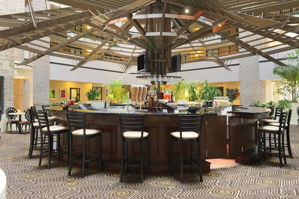 Bar, Embassy Suites Orlando International Drive I Drive 360