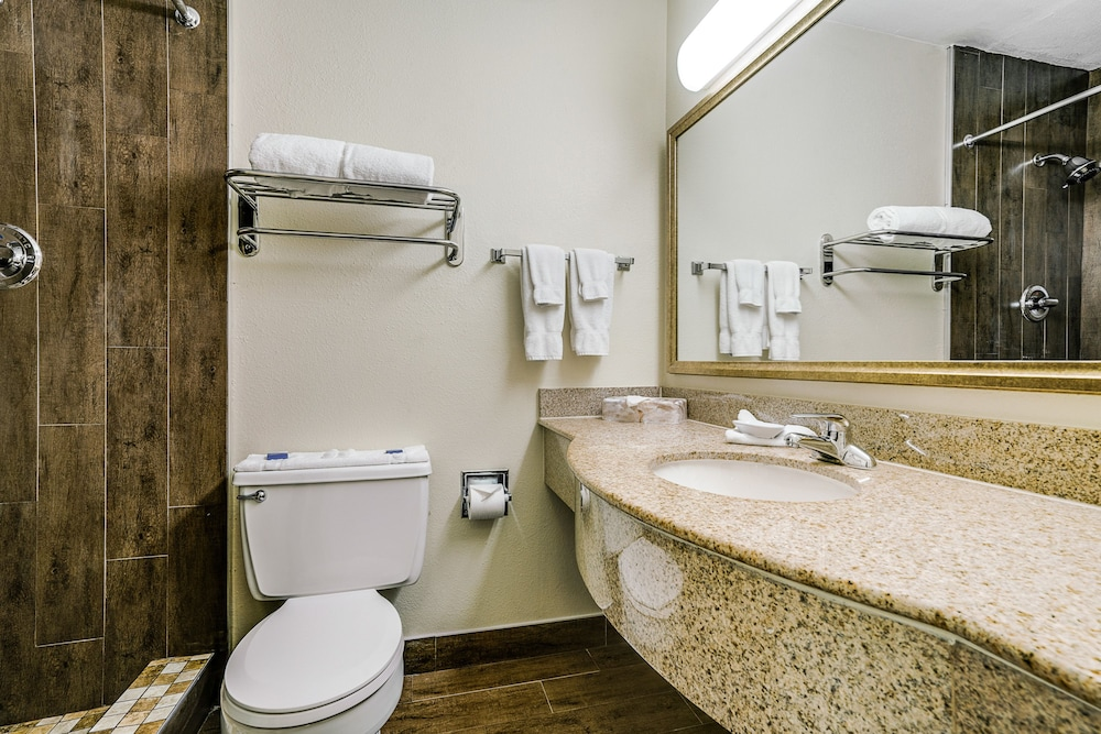 Bathroom, Quality Inn & Suites Dallas-Cityplace