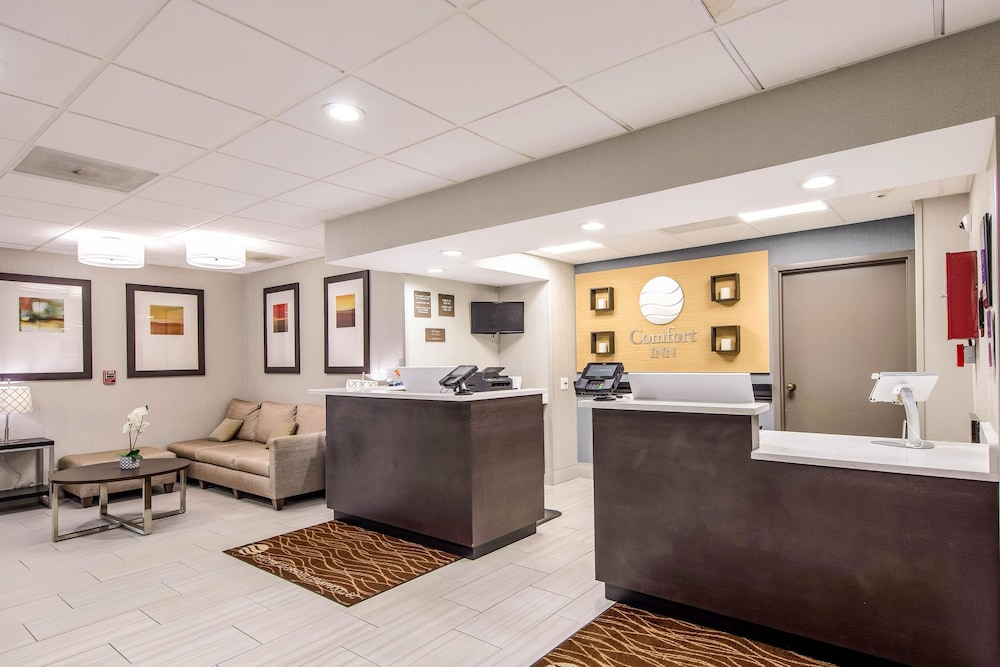 Lobby, Comfort Inn Greenville - Haywood Mall