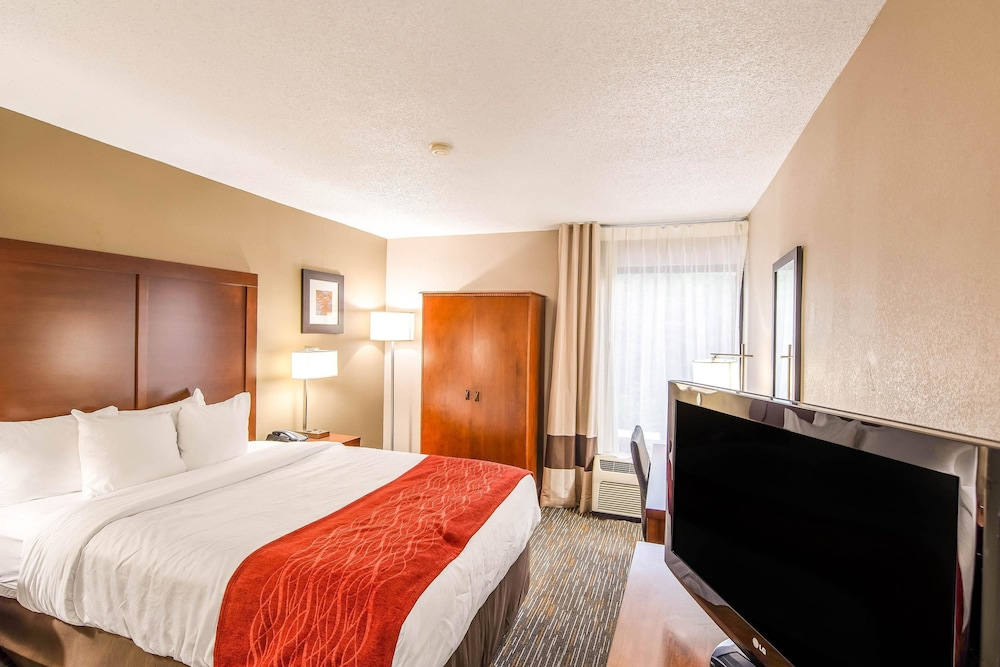 Room, Comfort Inn Greenville - Haywood Mall