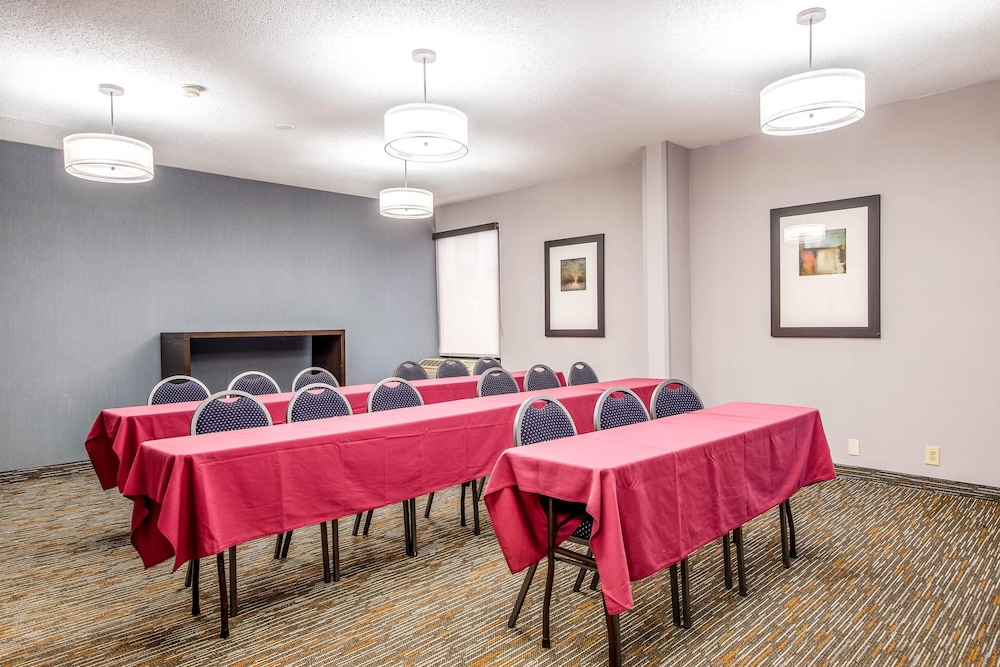 Meeting Facility, Comfort Inn Greenville - Haywood Mall