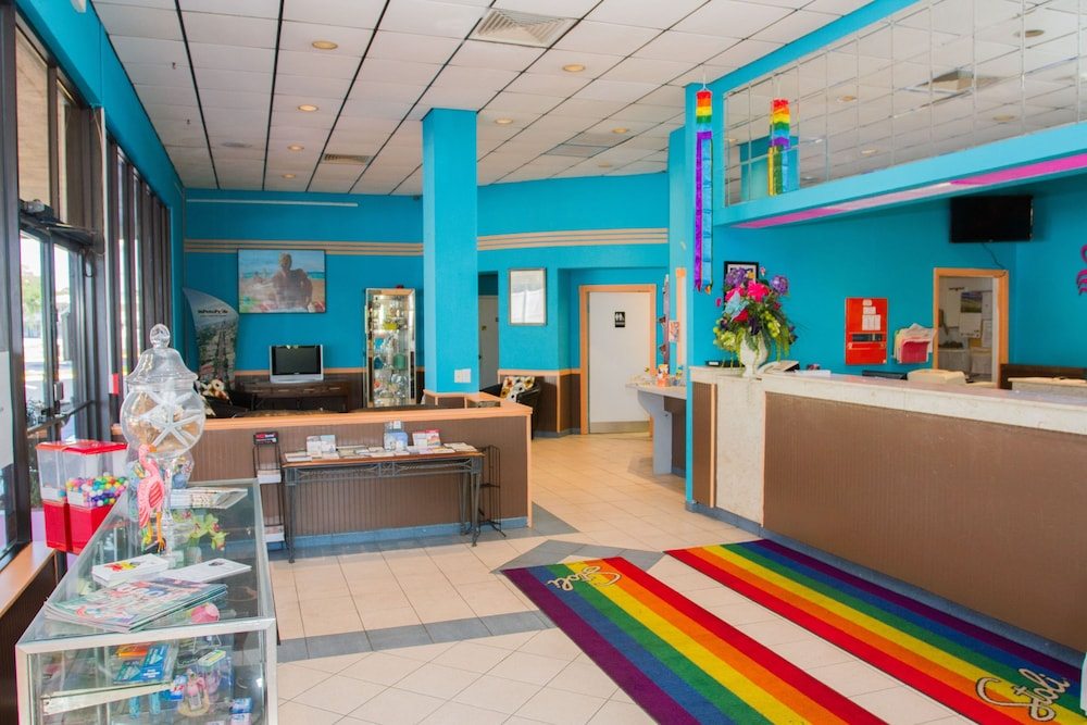 The Flamingo Resort - Gay Adult Resort: 2019 Room Prices $84, Deals &  Reviews | Expedia