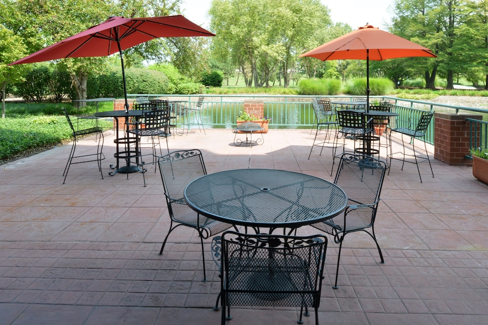Terrace/Patio, Elimwood Hotel