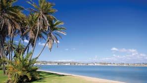 On the beach, white sand, windsurfing, beach volleyball