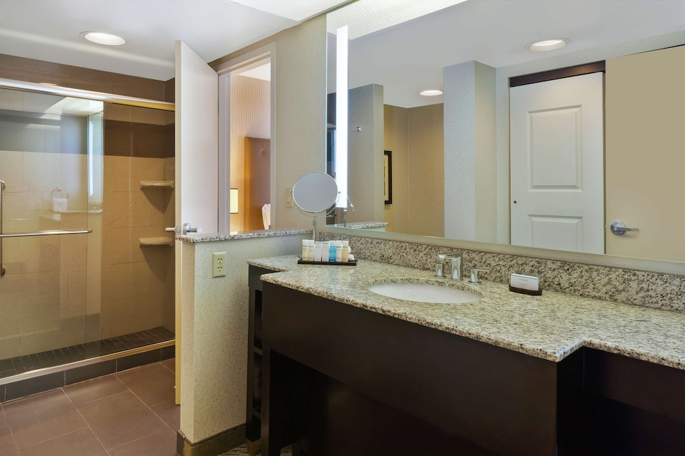 Bathroom, Embassy Suites by Hilton Auburn Hills