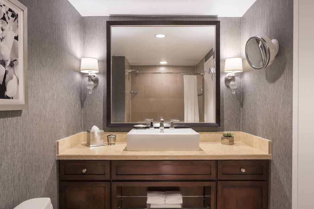Bathroom, The Ritz-Carlton, Atlanta