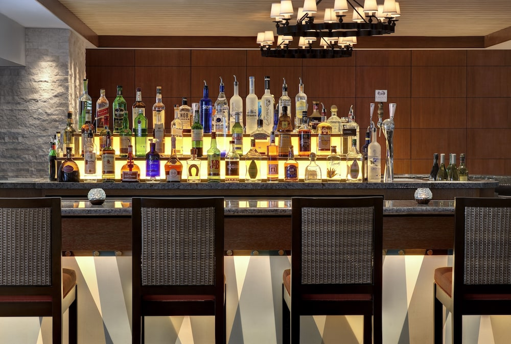 Bar, Loews Coronado Bay Resort