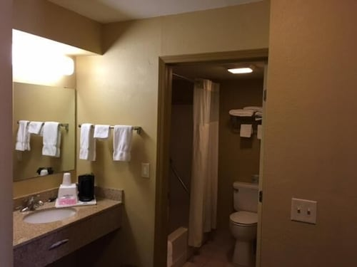 Bathroom, Econo Lodge Inn & Suites