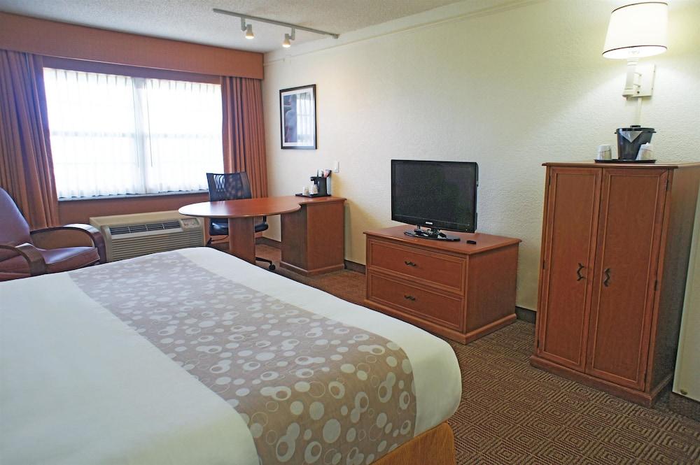 Hotel Rooms In Coral Springs Fl