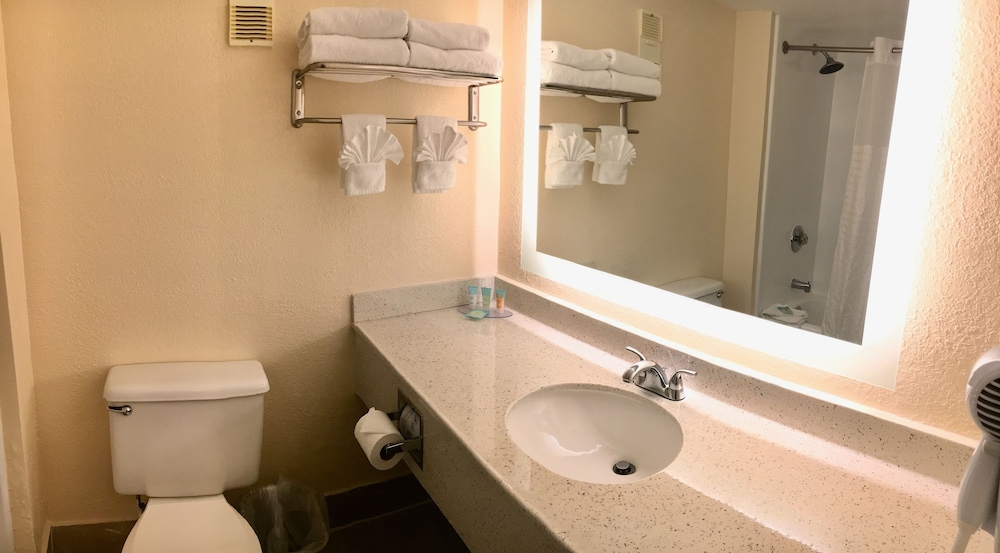 Bathroom, Floridian Express Extended Stay Hotel