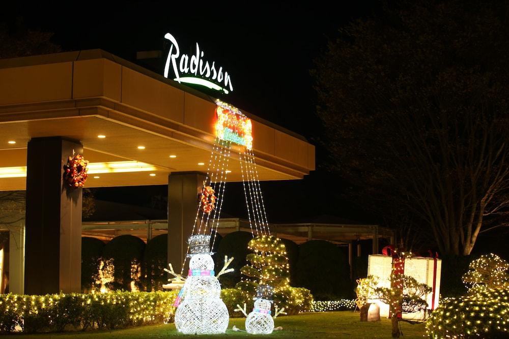ラディソンホテル成田 / 千葉県 成田 43