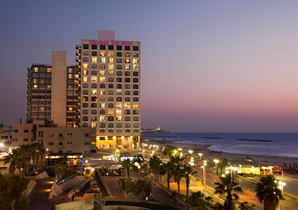 Featured Image, Orchid Tel Aviv