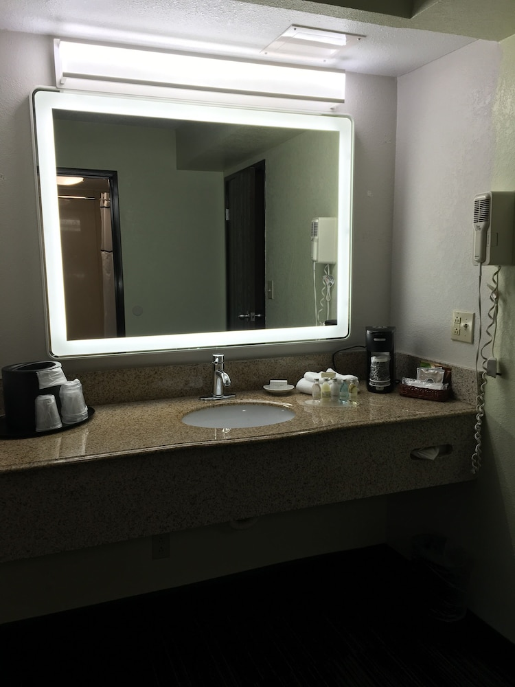 Bathroom Sink, The Alexis Inn & Suites - Nashville Airport