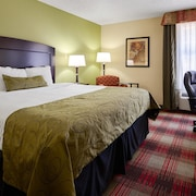 Best Western Plus Addison/Dallas Hotel