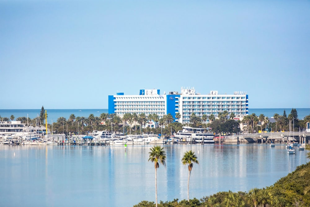 hilton clearwater beach resort spa 2019 room prices. Black Bedroom Furniture Sets. Home Design Ideas